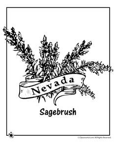 california state flower state map of california coloring sheet for kids at flower state california