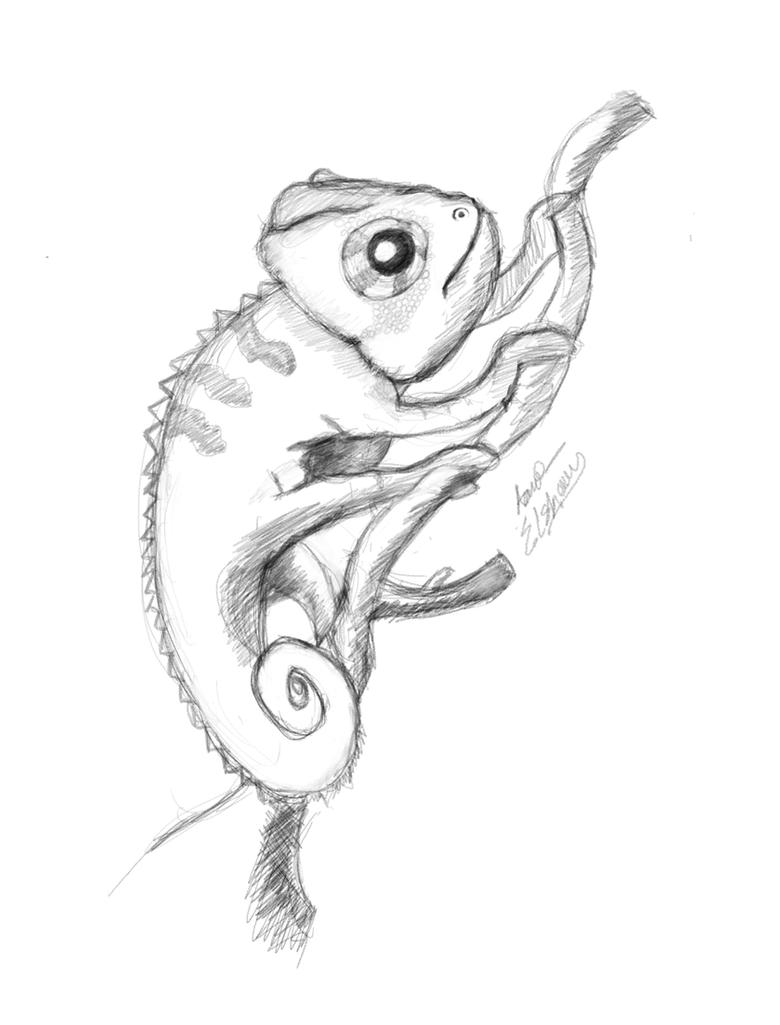chameleon drawings how to draw a chameleon really easy drawing tutorial drawings chameleon