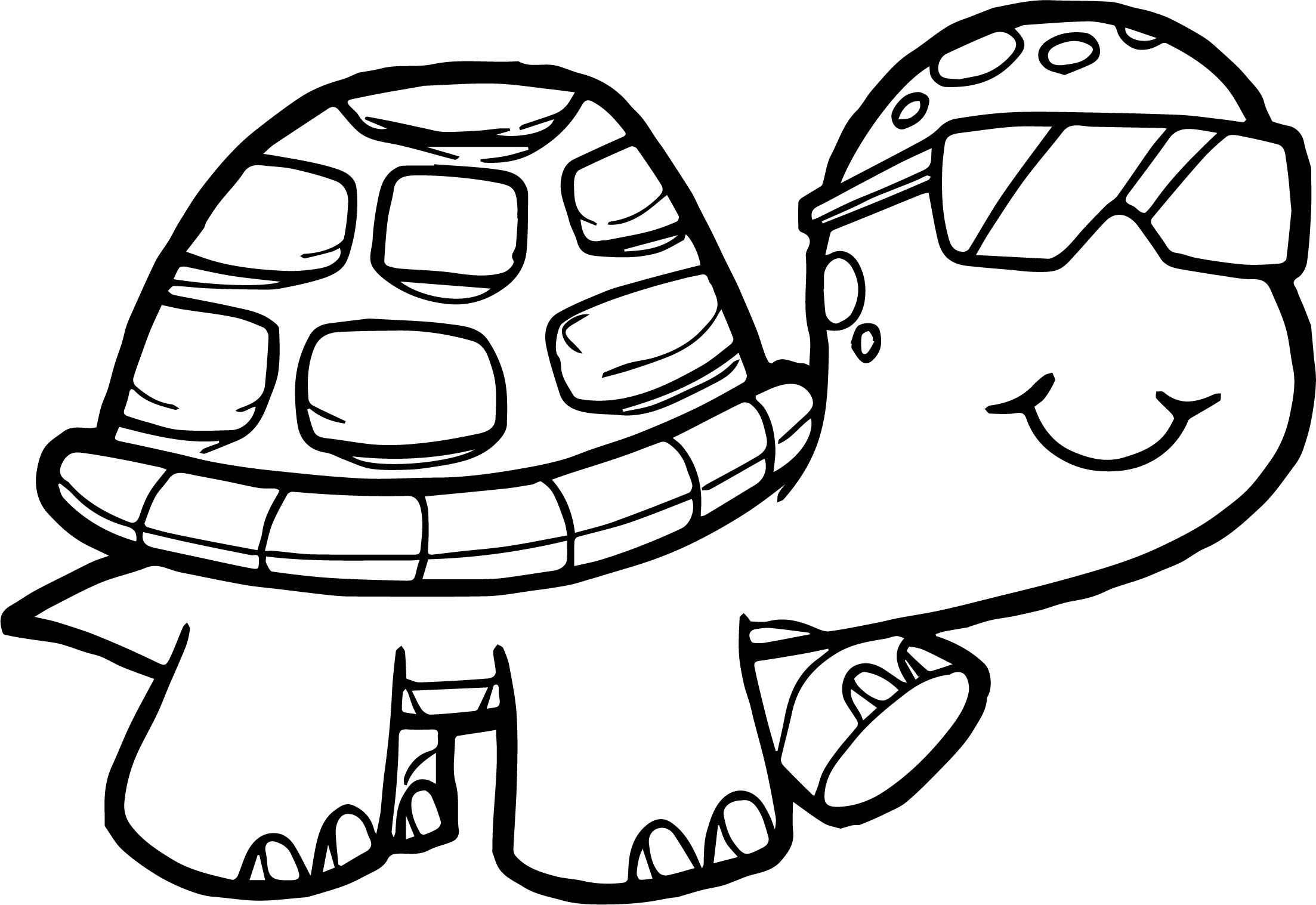 coloring sheet turtle tortoise drawing at getdrawingscom free for personal sheet coloring turtle