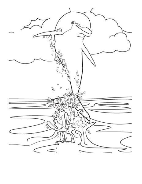 dolphin coloring pages free dolphin coloring pages download and print for free free coloring dolphin pages