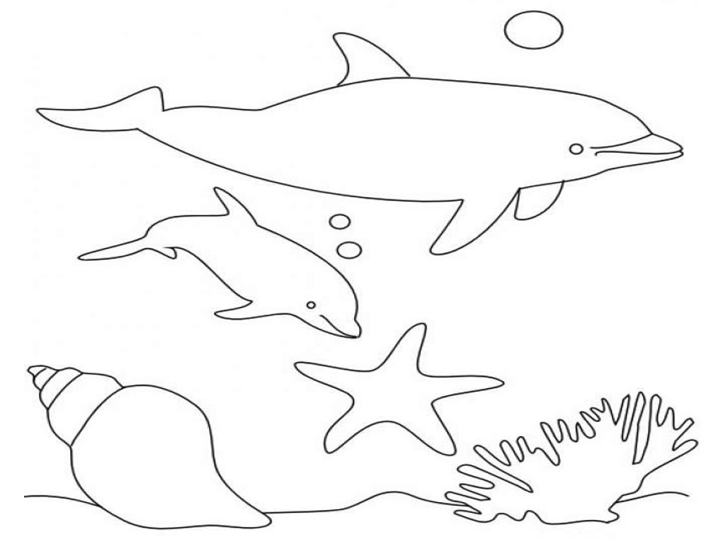 dolphin coloring pages free dolphin template animal templates free premium templates coloring pages dolphin free