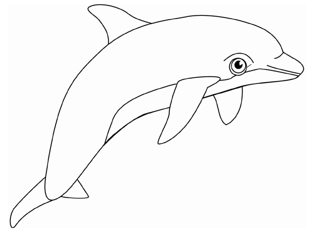 dolphin coloring pages free free printable dolphin coloring pages for kids cool2bkids dolphin coloring free pages