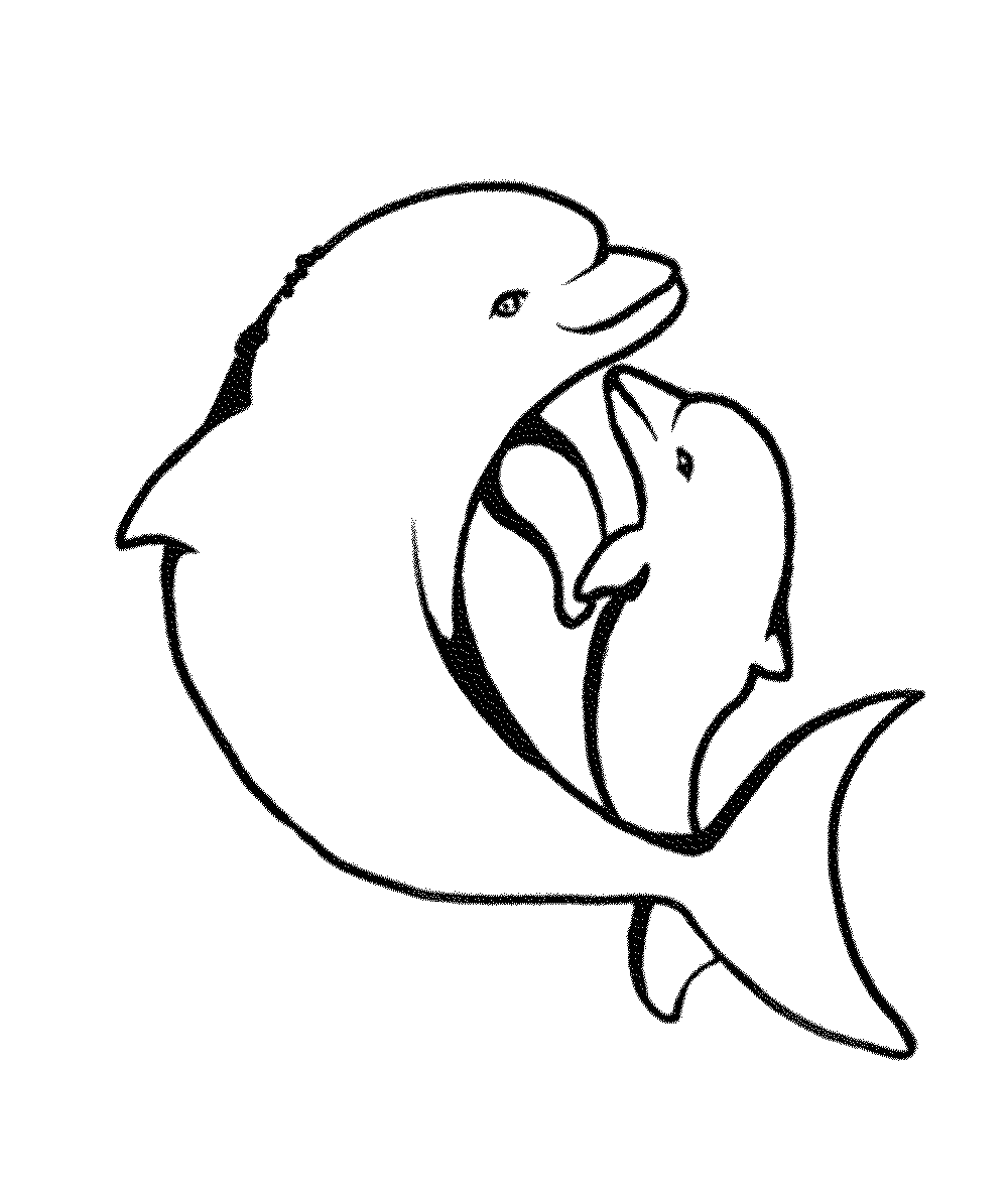dolphin coloring pages free free printable pictures of dolphins download free clip dolphin free coloring pages