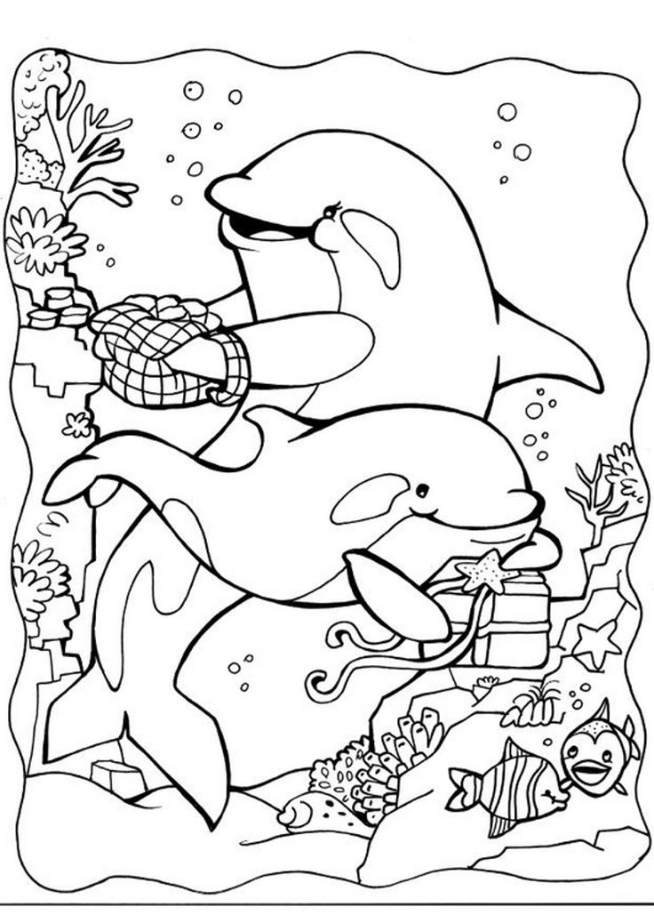 dolphin coloring pages free print download my experience of making dolphin dolphin free pages coloring