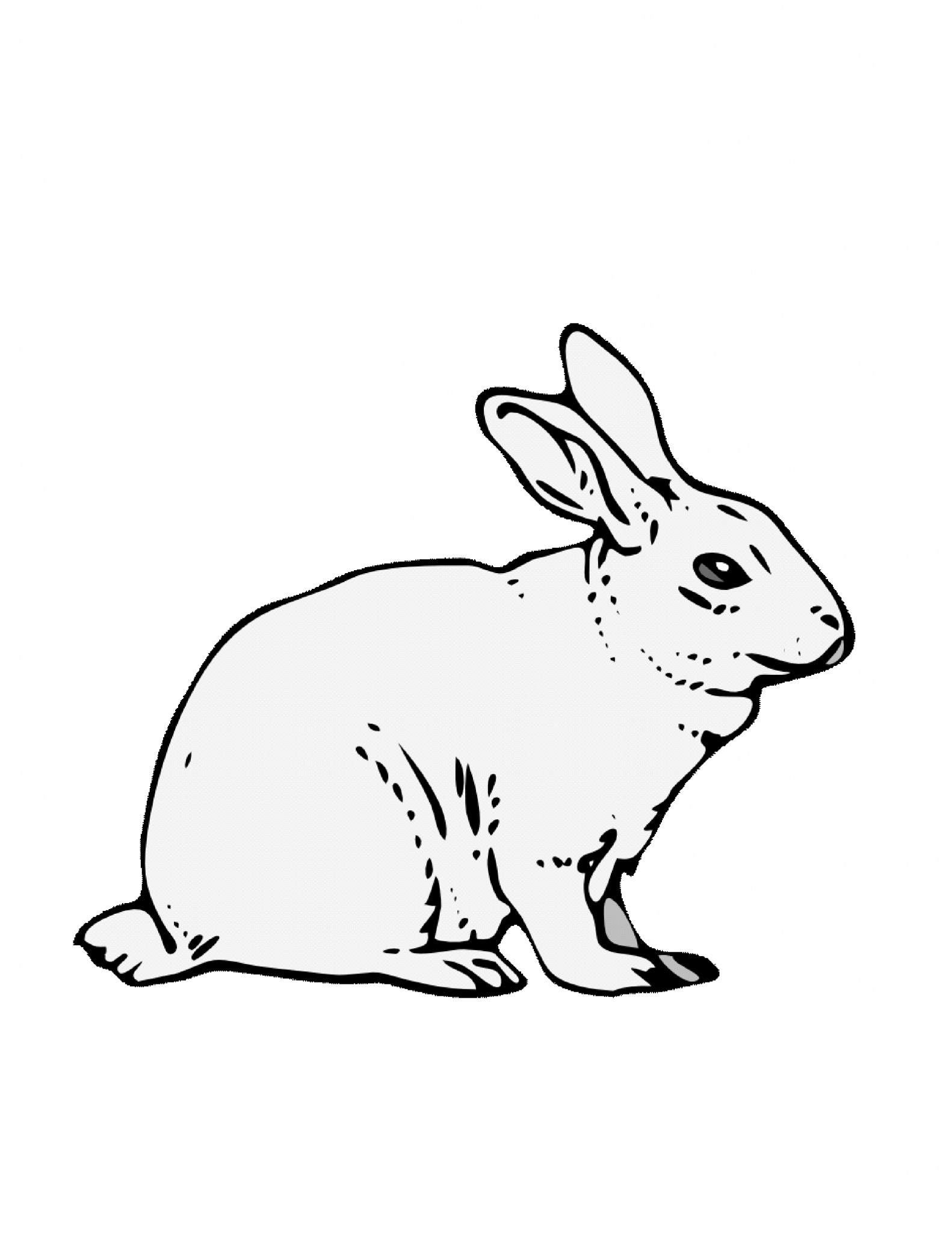 rabbit picture for colouring free printable rabbit coloring pages for kids picture rabbit for colouring