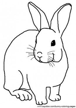 rabbit picture for colouring small rabbit coloring page free printable coloring pages colouring rabbit for picture