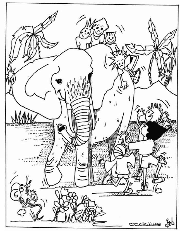 african animals colouring africa coloring pages to download and print for free animals african colouring