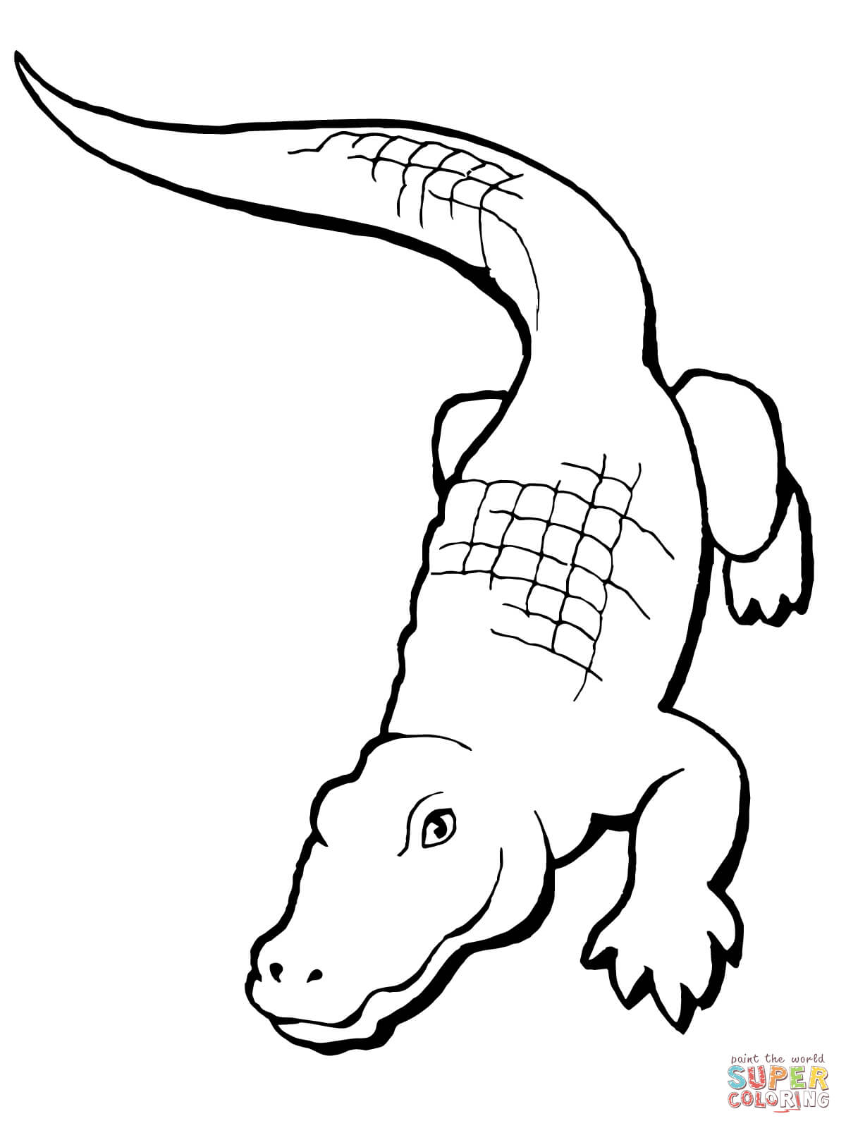 alligator drawing crocodile by clayjames on deviantart drawing alligator