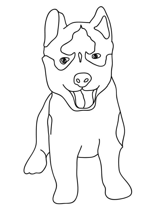 baby dog dog coloring pages husky coloring pages best coloring pages for kids baby dog dog pages coloring
