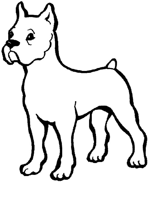 baby dog dog coloring pages pug coloring pages to download and print for free baby coloring dog pages dog