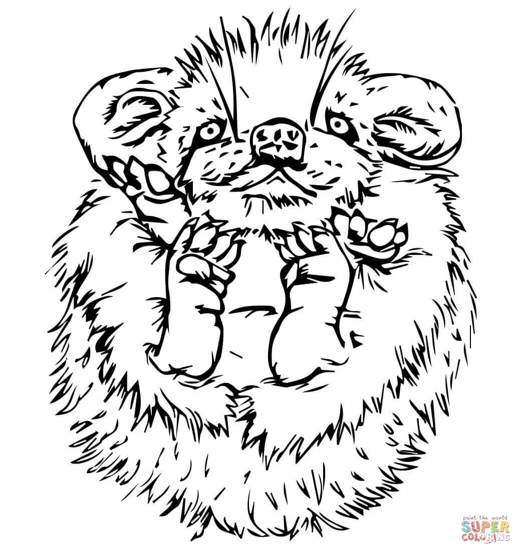 baby hedgehog coloring pages baby sonic coloring pages at getcoloringscom free hedgehog baby pages coloring