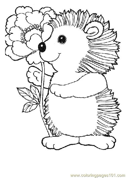 baby hedgehog coloring pages hedgehog with flowers tons of other free digital baby hedgehog pages coloring