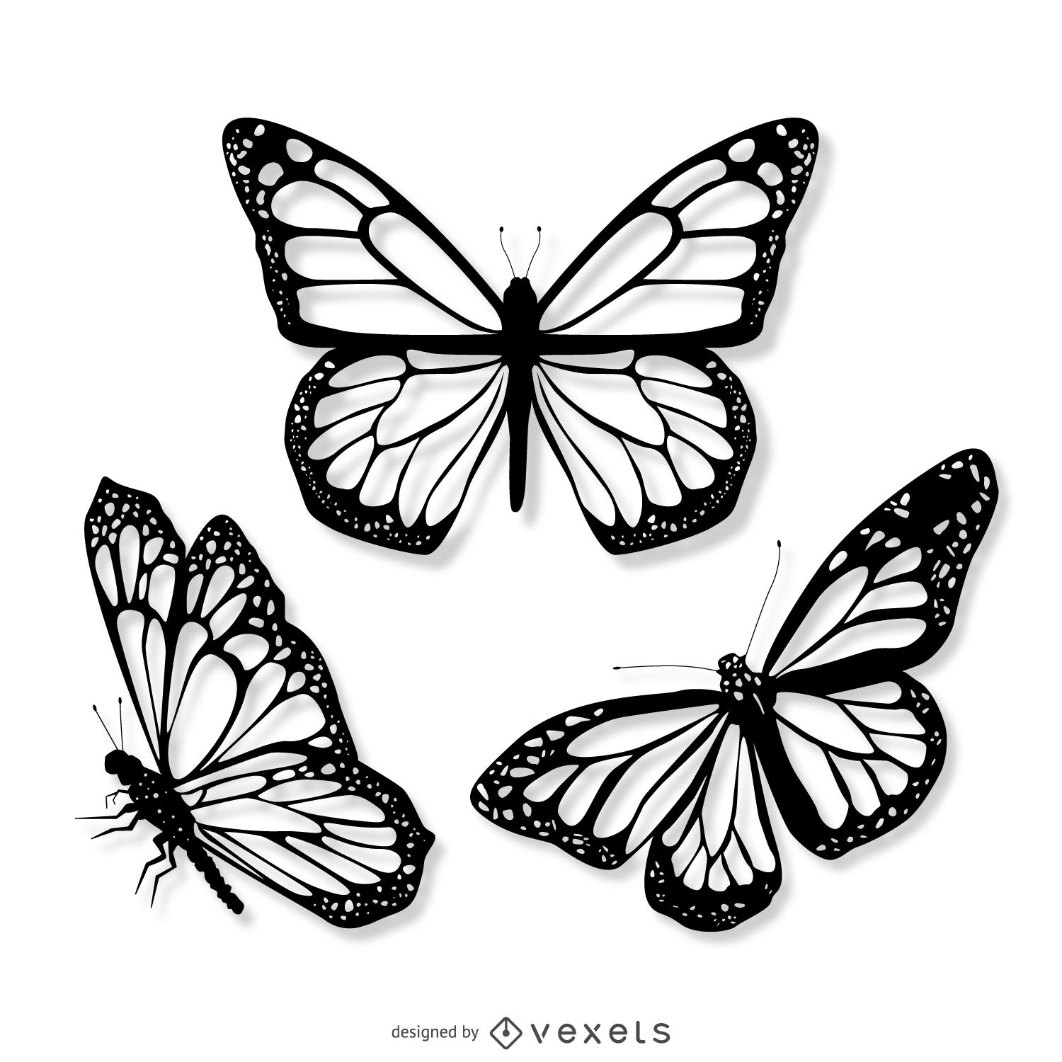 butterfly drawing how to draw a butterfly drawingforallnet drawing butterfly