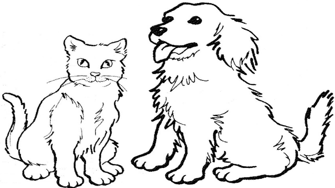 cat drawing coloring cat coloring pages drawing coloring cat