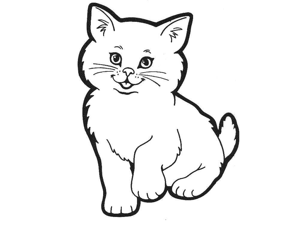 cat outline for coloring black and white cat lineart free clip art cat for coloring outline