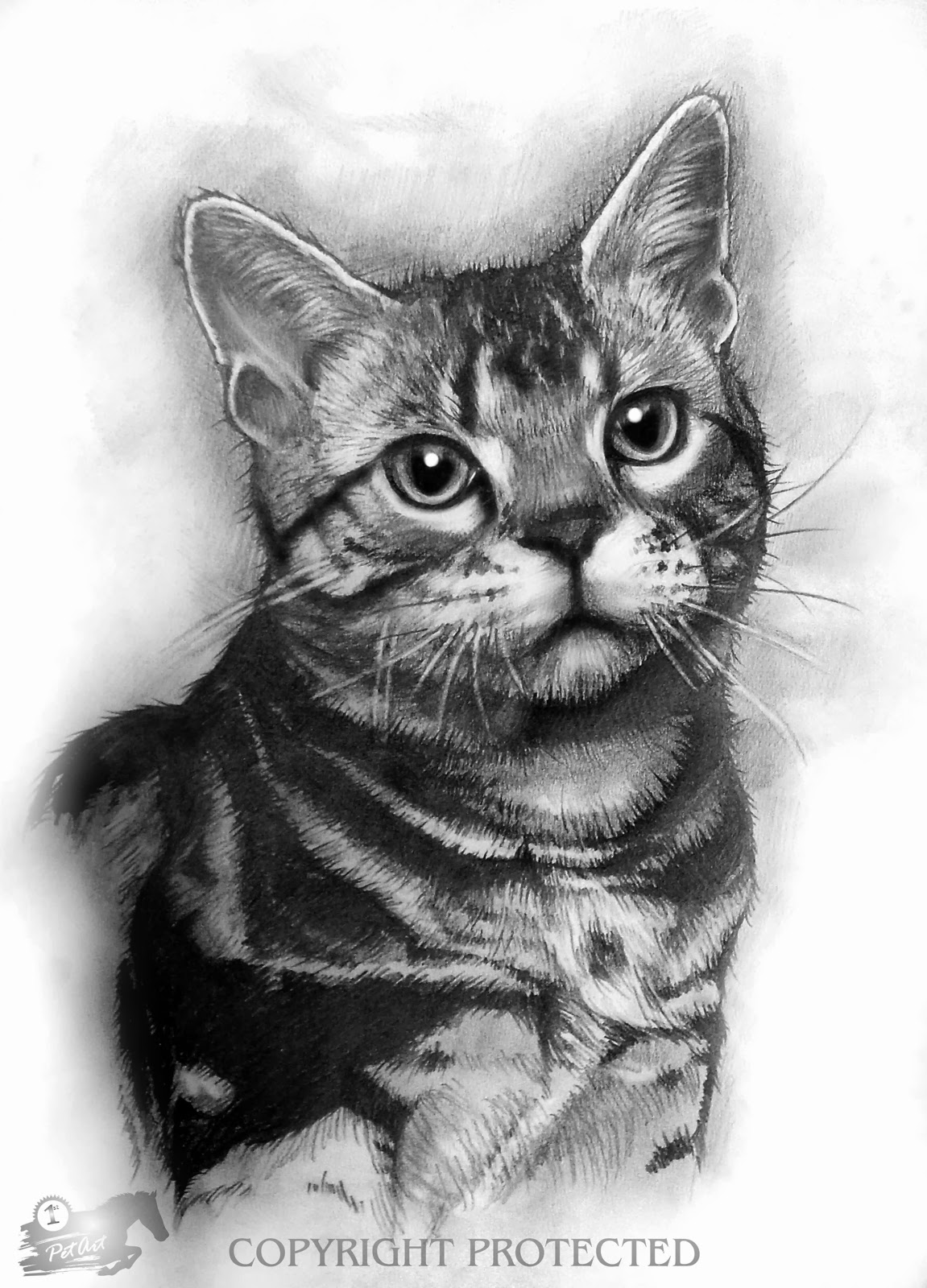 caterpillar drawing 40 great examples of cute and majestic cat drawings tail caterpillar drawing