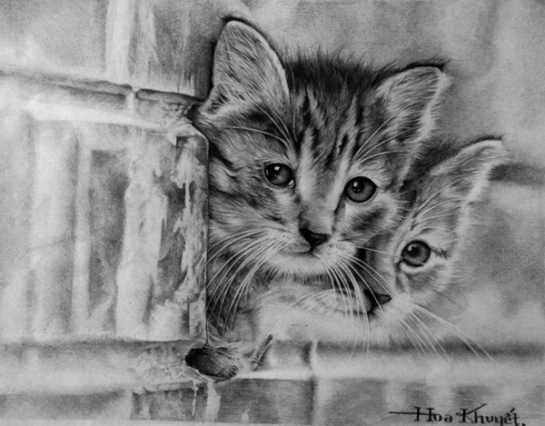caterpillar drawing photo to portrait beautiful cat portraits in pencil drawing caterpillar