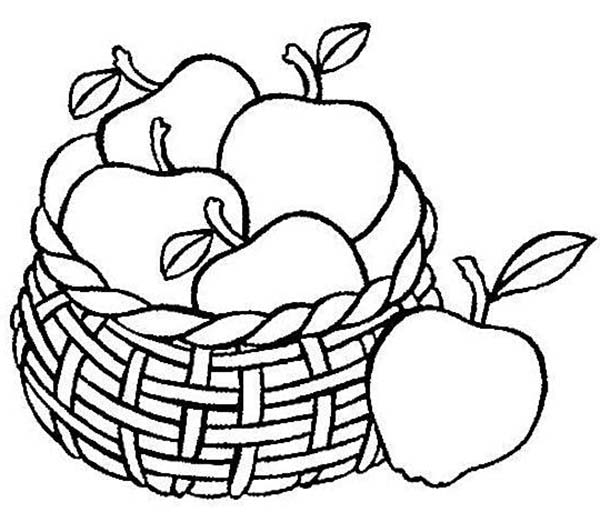 coloring apples in a basket picnic basket drawing at getdrawings free download in basket apples a coloring