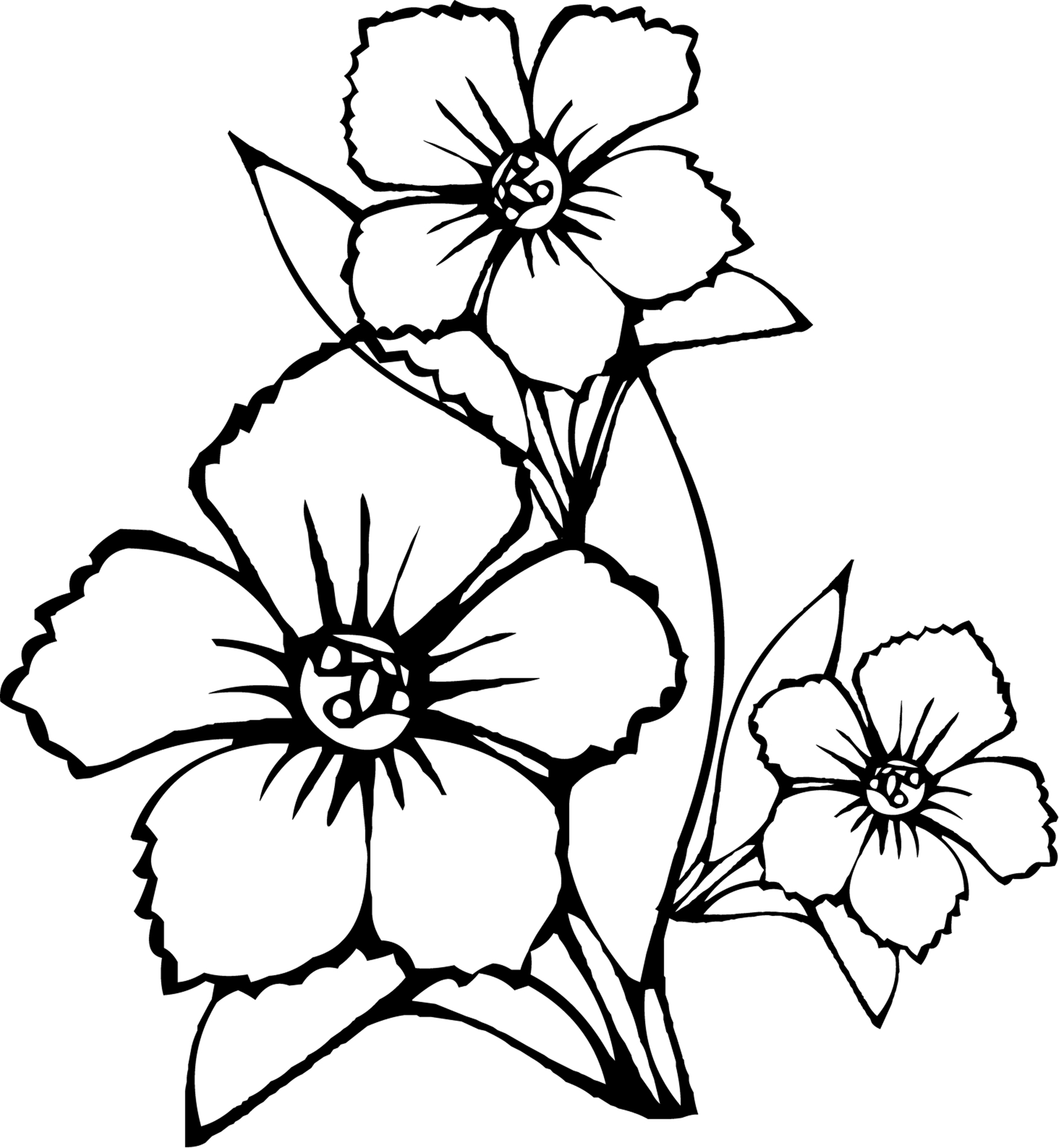 coloring images flowers free printable flower coloring pages for kids best flowers coloring images