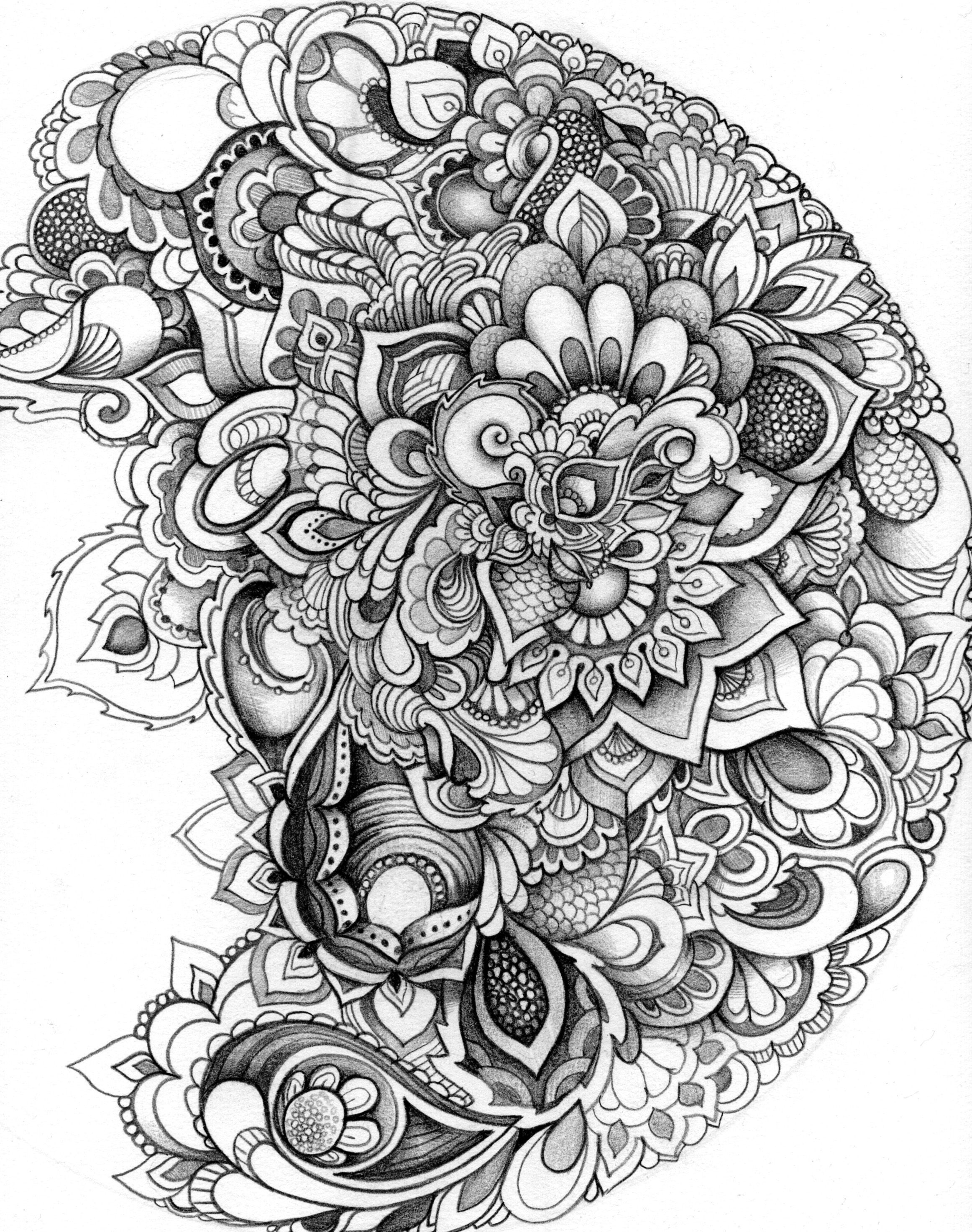coloring pages drawings make any picture a coloring page with ipiccy ipiccy coloring pages drawings