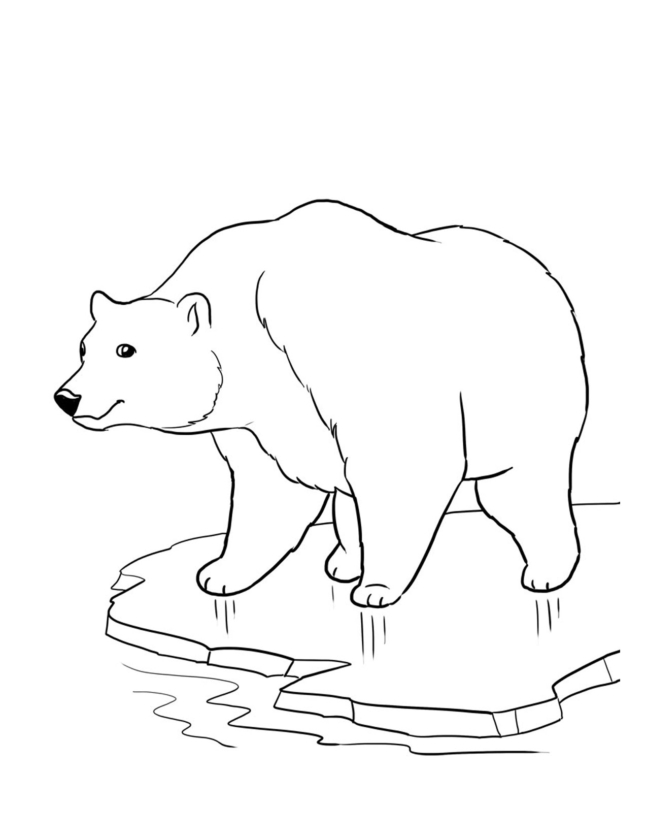 coloring picture bear free printable care bear coloring pages for kids coloring picture bear