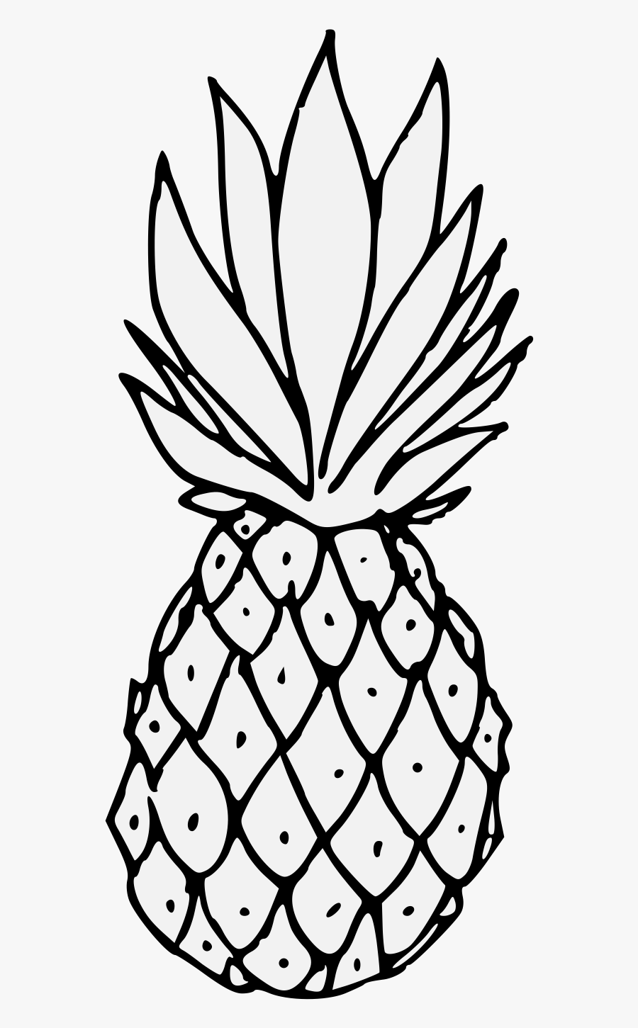 coloring pineapple clipart black and white printable pineapple coloring pages for kids cool2bkids white coloring pineapple black clipart and
