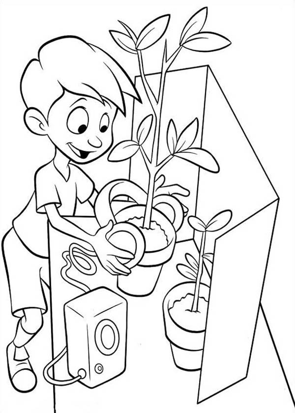 coloring plants plant coloring pages to download and print for free plants coloring
