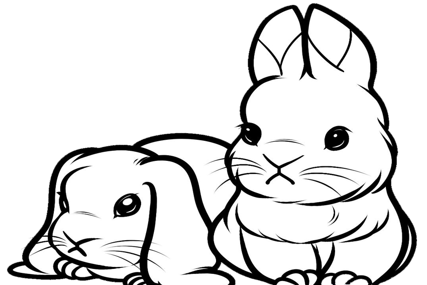 cute bunny coloring pages printable cute bunny coloring pages to download and print for free bunny coloring cute pages printable