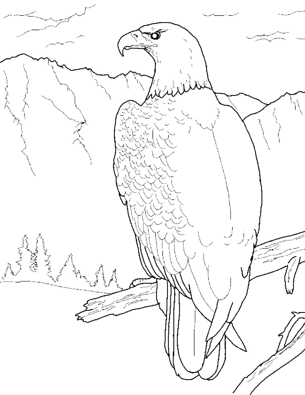 eagle coloring pages printable eagle coloring pages free printable black and white pictures eagle printable coloring pages