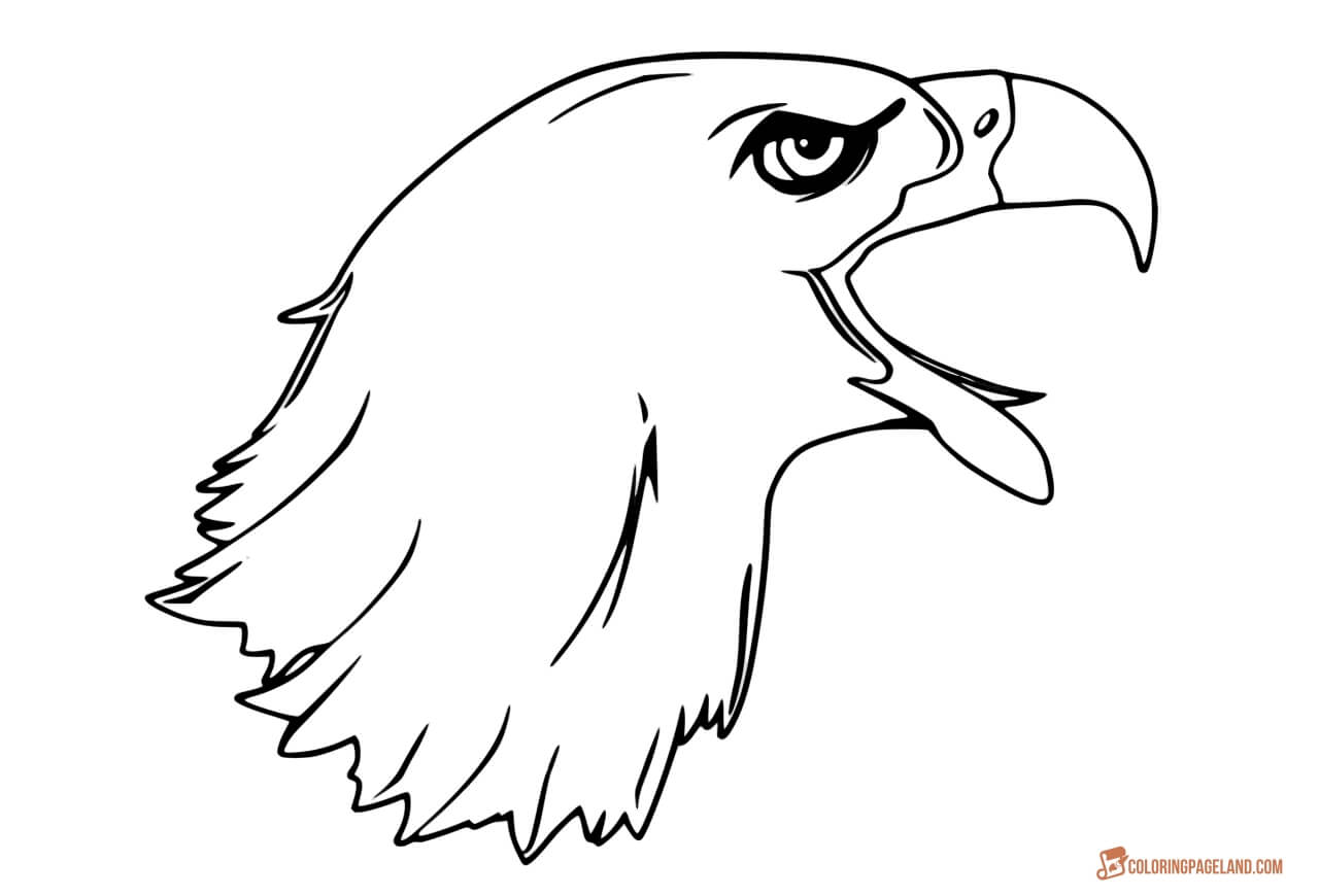 eagle coloring sheet eagle coloring pages free printable black and white pictures eagle coloring sheet 1 1