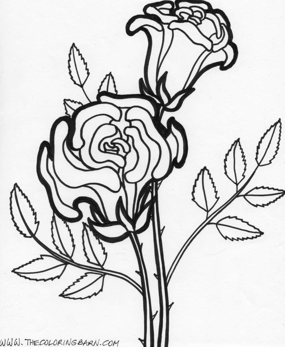 easy coloring pages of flowers coloring pages worksheets simple flower coloring pages easy flowers of pages coloring