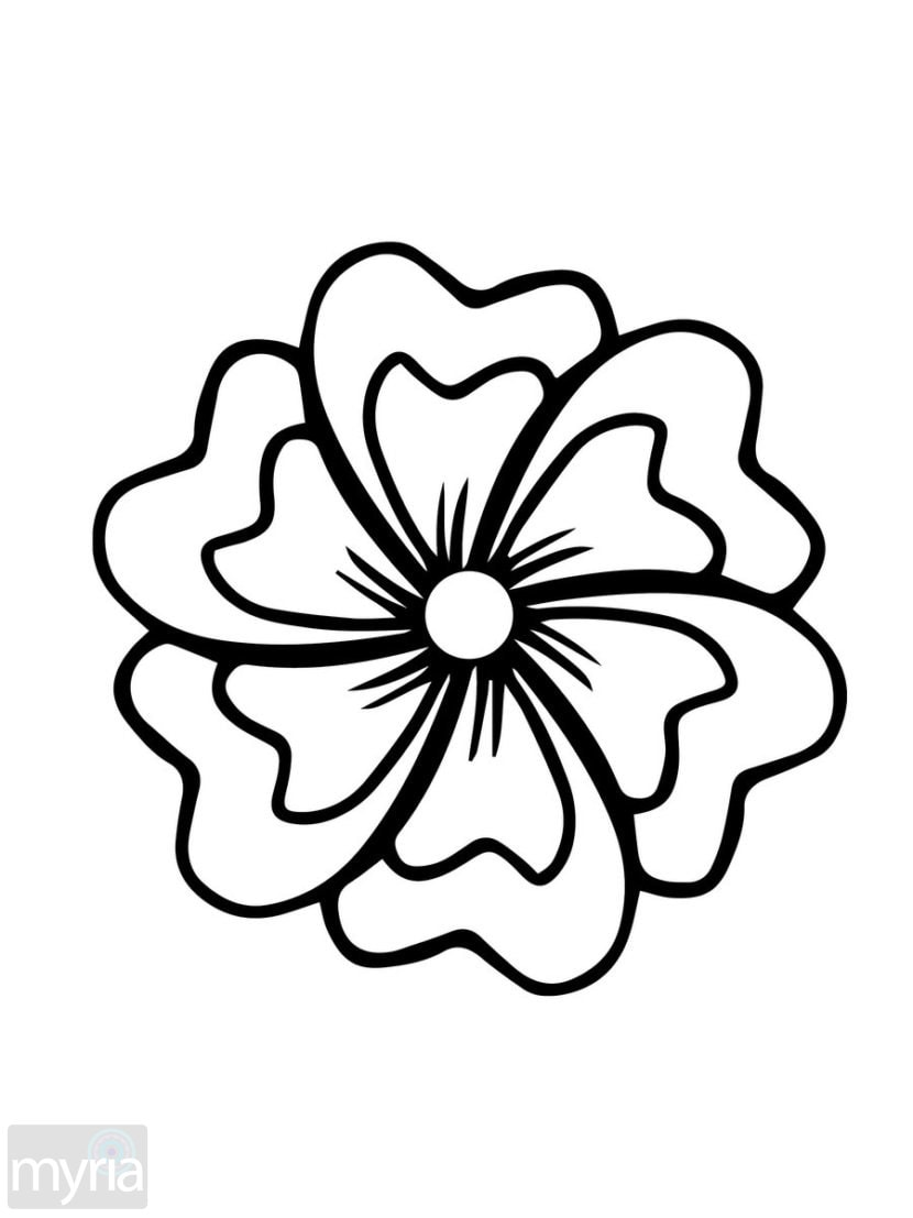 easy coloring pages of flowers flower simple 2 coloring page flowers coloring easy of pages