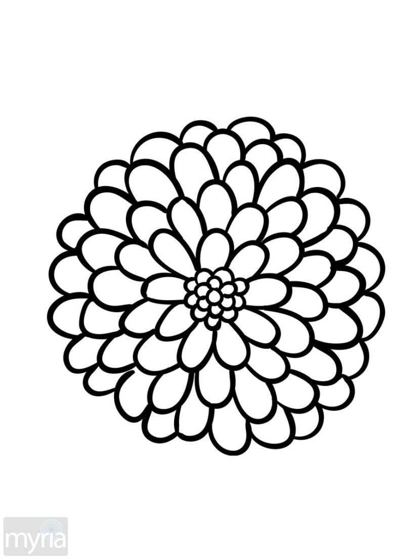 easy coloring pages of flowers pin by becky wammack on shut in cards pinterest easy pages of coloring flowers