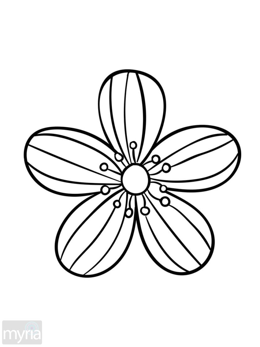 easy coloring pages of flowers simple flower design coloring page wecoloringpagecom flowers coloring of easy pages