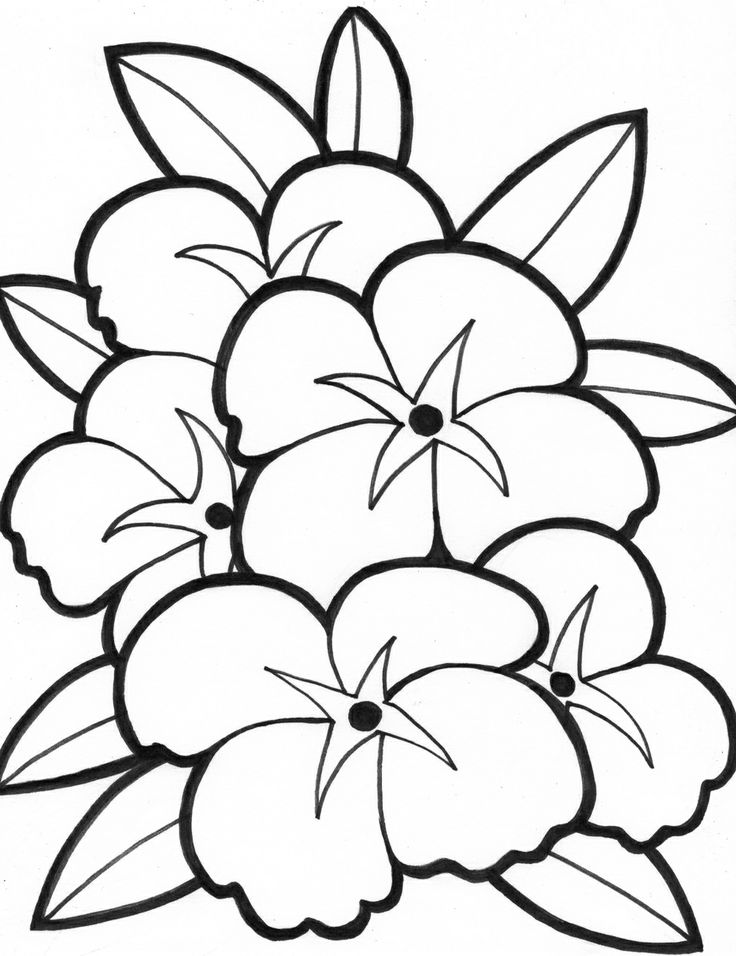 easy coloring pages of flowers simple flower drawings for kids clipart best flowers pages easy coloring of