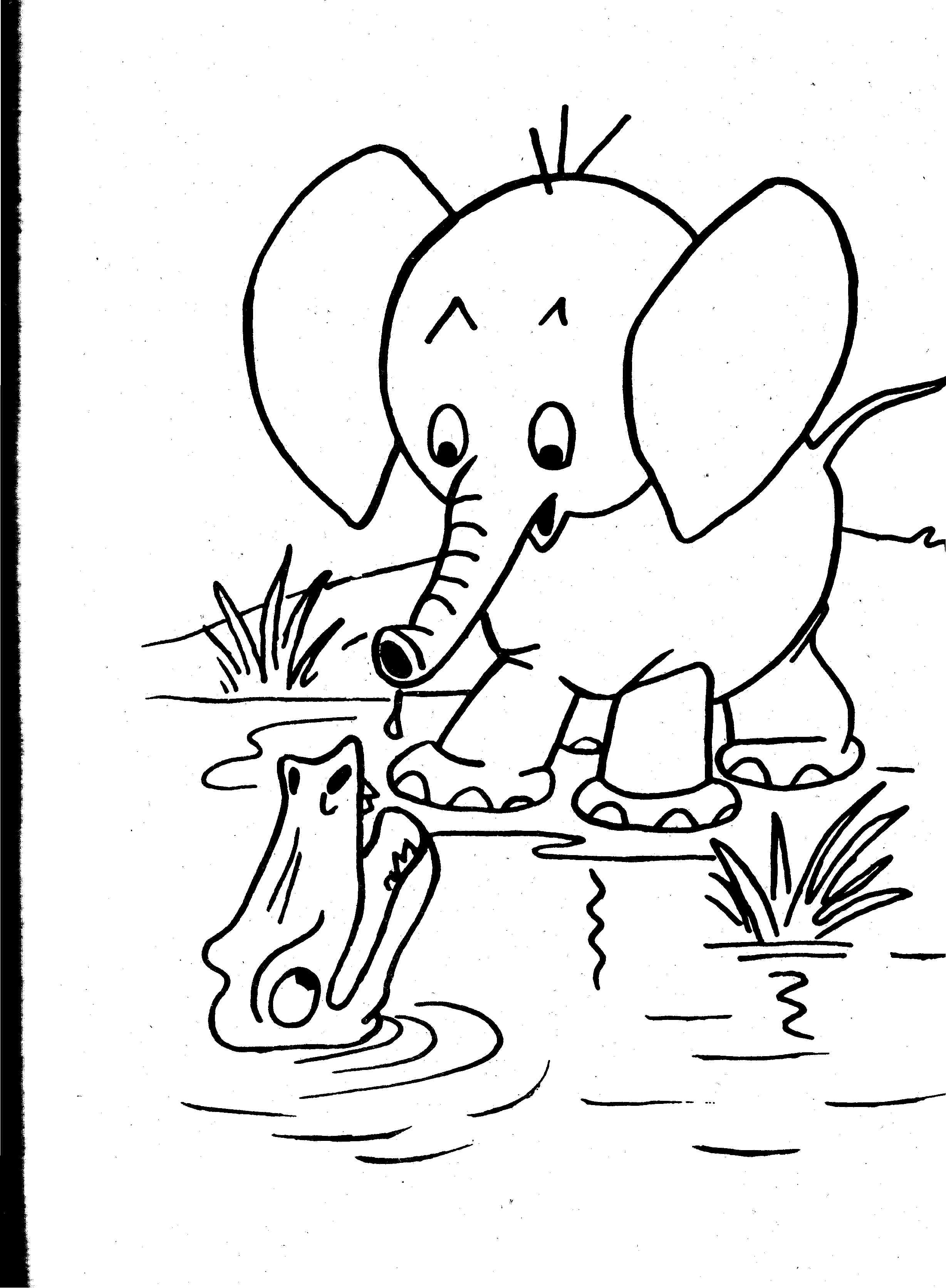 free coloring pages of realistic animals animal drawing outlines at getdrawings free download of pages coloring realistic free animals