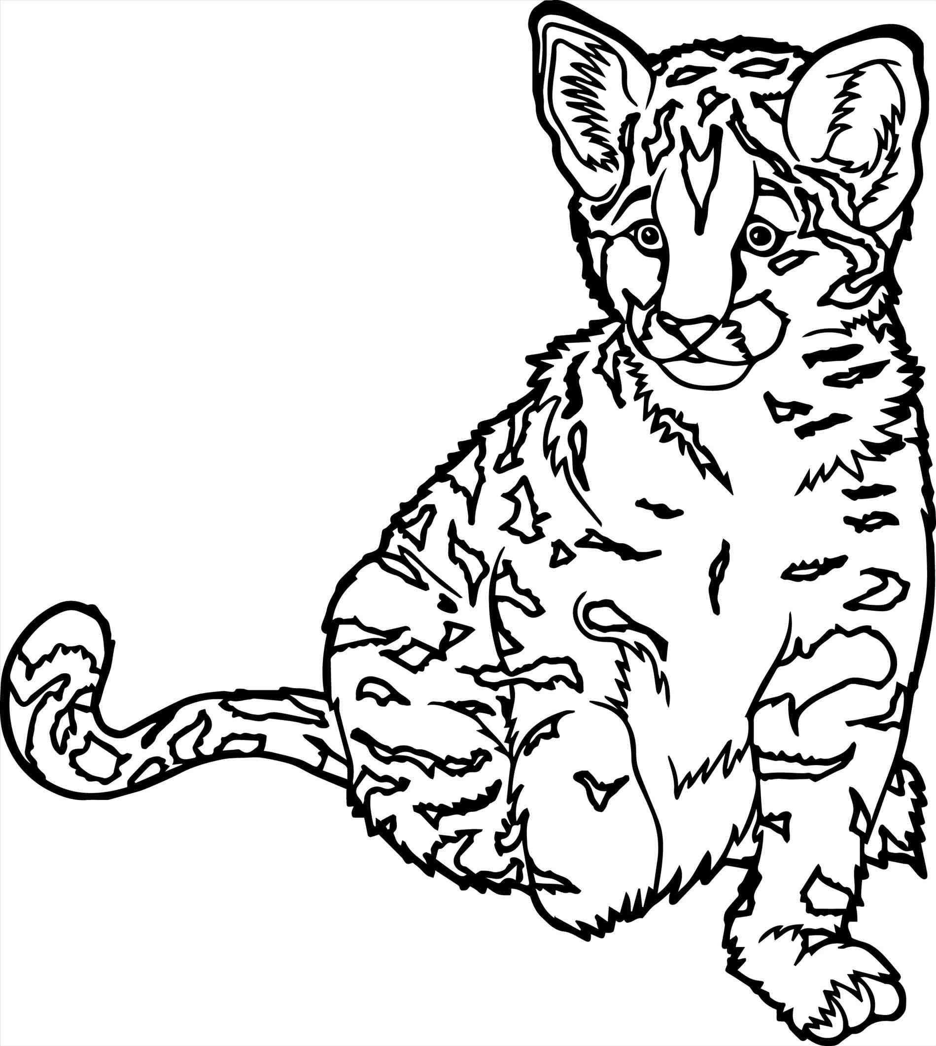 free coloring pages of realistic animals realistic animal coloring pages free printable animals pages free animals of realistic coloring
