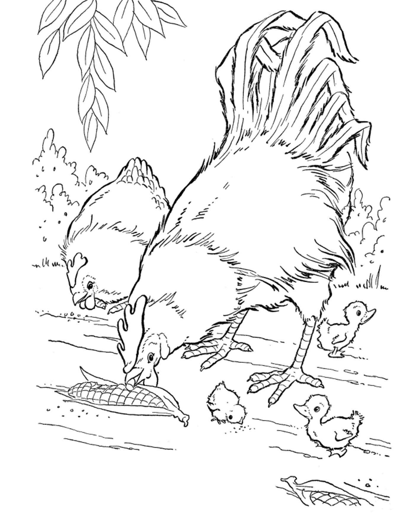 free coloring pages of realistic animals realisticanimalcoloringpages1lrgjpg thebooks pages realistic of animals free coloring