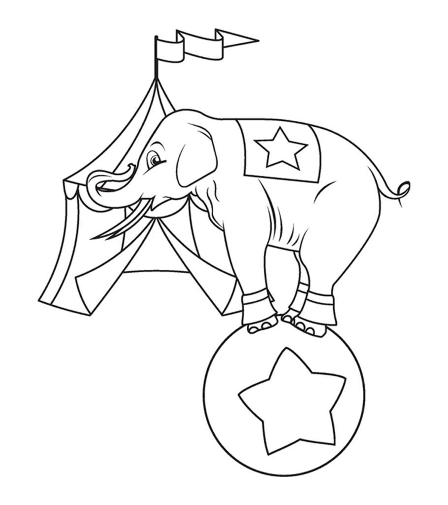free printable elephant coloring pages elephant coloring pages for kids printable for free free coloring printable pages elephant
