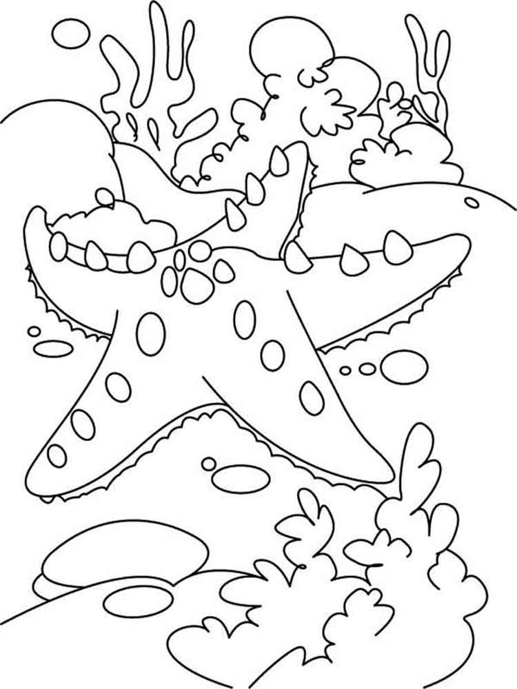 free starfish coloring page summer coloring pages to print coloring starfish page free