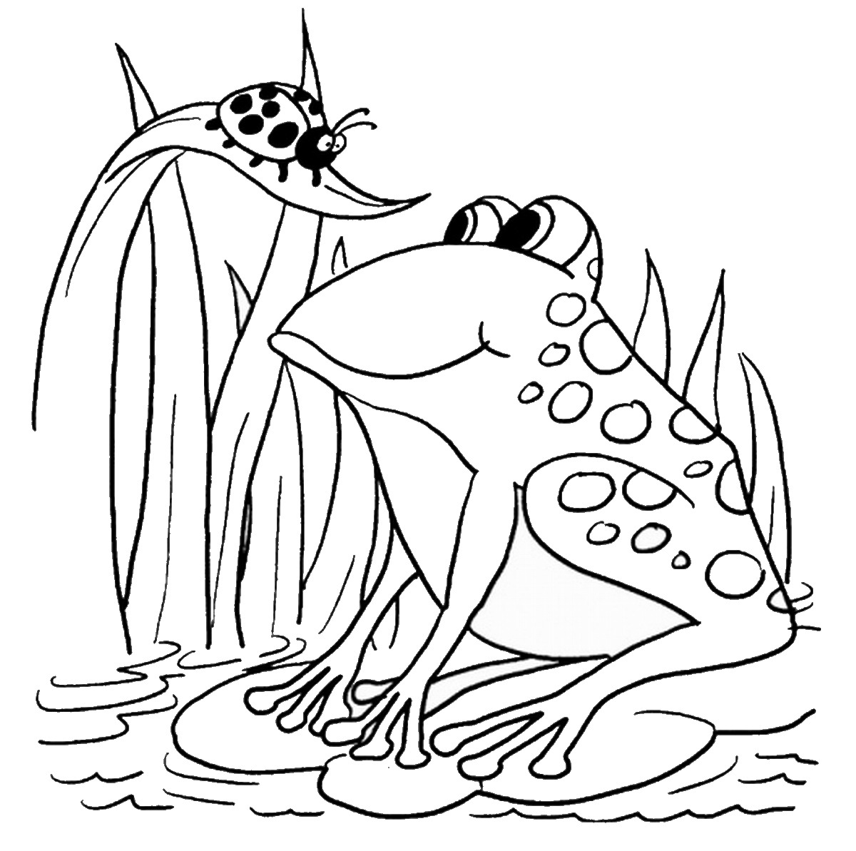 frogs to color for free frog coloring pages frogs for to free color