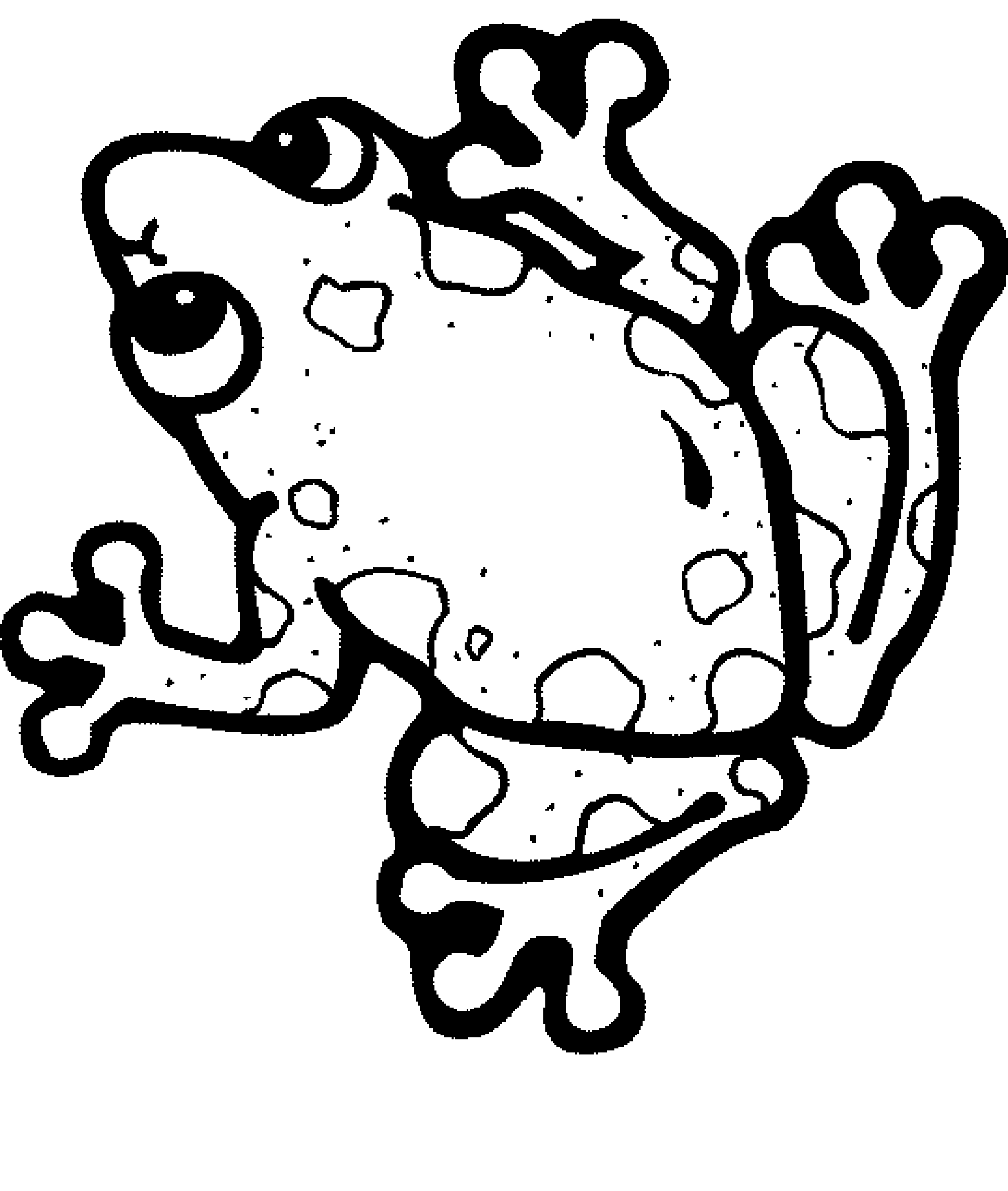 frogs to color for free tree frog coloring pages free download on clipartmag frogs free for to color