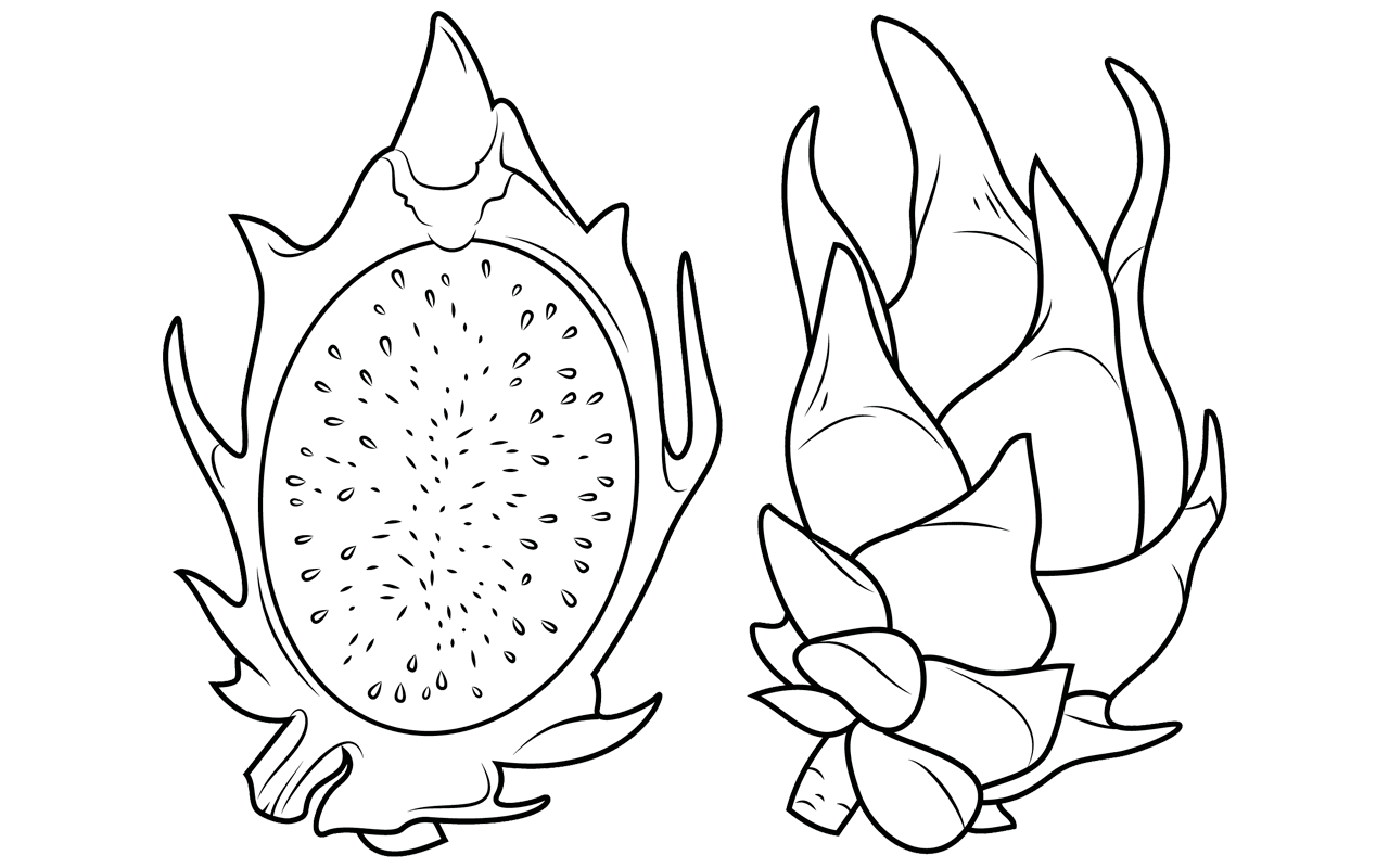 fruit ninja coloring pages avocado page coloring pages coloring pages ninja fruit