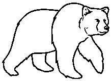 grizzly bear outline grizzly bear pattern use the printable pattern for crafts outline bear grizzly