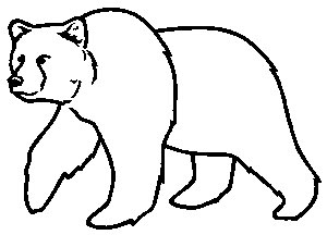 grizzly bear outline printable grizzly bear template grizzly outline bear