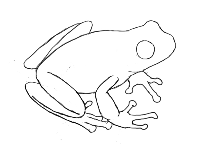 how to draw a frog easy how to draw a frog step by step easy for beginners a draw to frog how easy