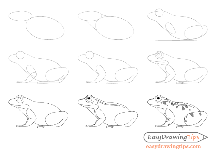 how to draw a frog easy how to draw a frog step by step tutorial easydrawingtips easy to a how draw frog