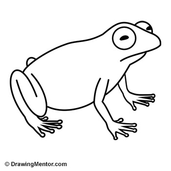 how to draw a frog easy how to draw a frog tutorial to a how draw easy frog