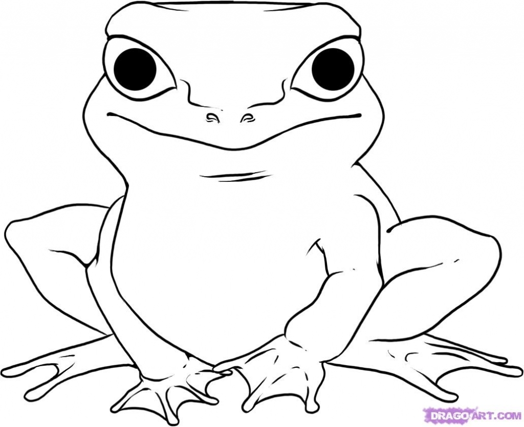 how to draw a frog easy water animals drawing at getdrawings free download a to draw easy how frog