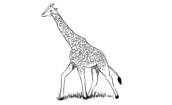 how to draw a giraffe step by step easy 27 best images about world giraffe day june 21st on by step easy a how to step giraffe draw